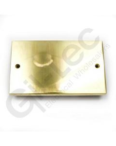 Polished Brass Double Blank Plate