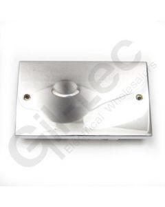 Polished Chrome Double Blank Plate