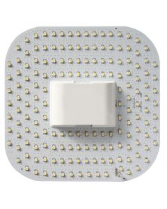 BELL 12W LED 2D - GR10q, 4000K, 4Pin